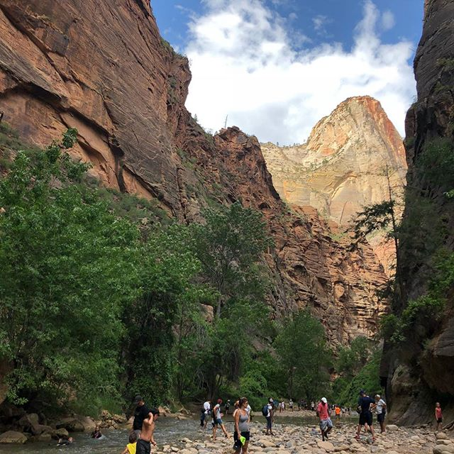 The Narrows at Zion National Park. Breathtaking. The xdMFA program will be at Zion in 2020 for a weekend of on-site study! #wkbnch